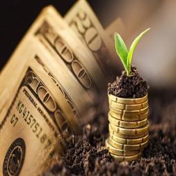 معرفی ۷ شغلی که با سرمایه کمتر از ۵ میلیون شما را به موفق می کند
