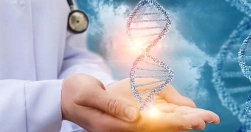DNA و آزمایش دی ان ای چیست؟