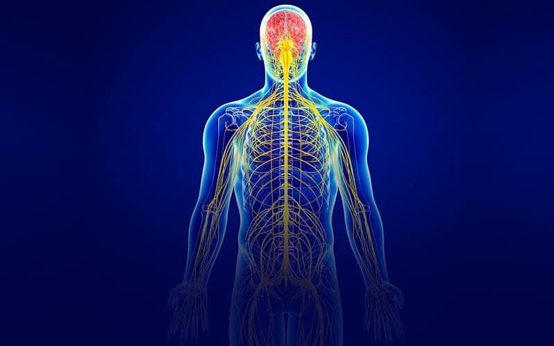 خارش بدن- درمان خارش بدن در طب سنتی