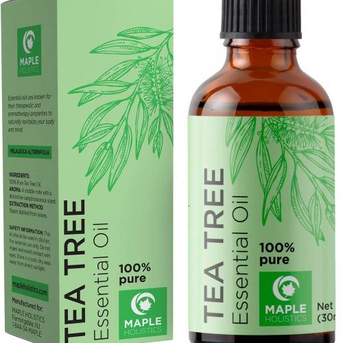 درخت چای