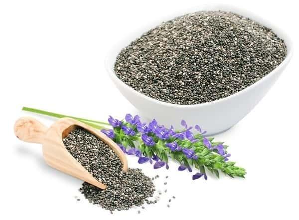 دانه چیا چیست و از چه گیاهی به دست میآید؟