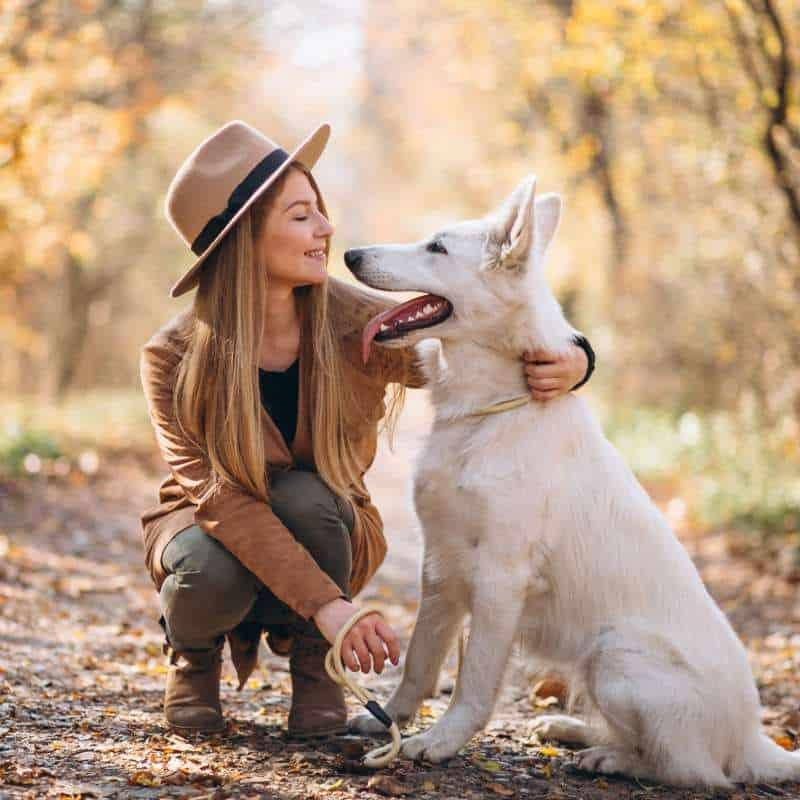اهمیت داشتن حیوان خانگی