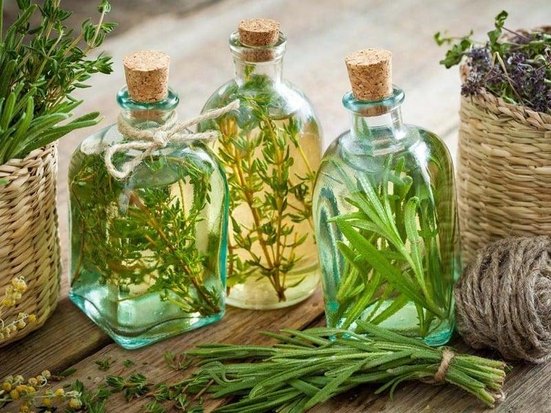 انواع روغن های گیاهی - رزماری