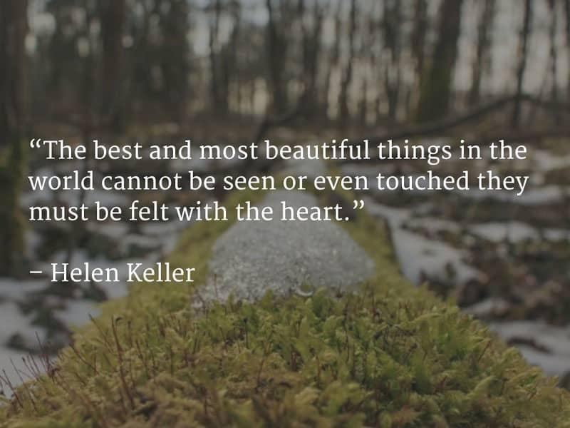 زیبایی های زندگی